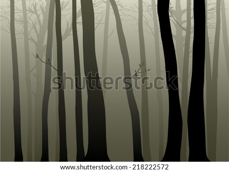 Vector illustration of woods - stock vector