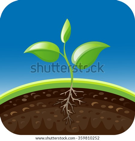 Vector illustration plant growing in the ground. Seedling icon - stock vector
