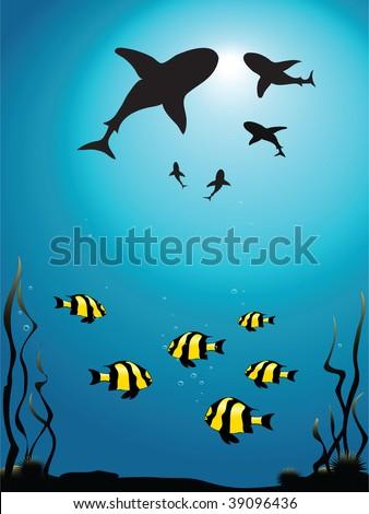 Vector illustration - seascape of sharks circling smaller fish - stock vector