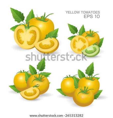 Vector illustration. Set of yellow fresh realistic tomatoes composition with leaves  isolated on white background - stock vector