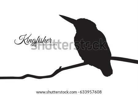 vector illustration silhouette of kingfisher sitting on a branch