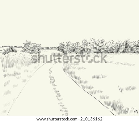 vector illustration  summer landscape with country road - stock vector