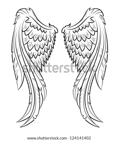 Vector illustration wings, EPS 10 - stock vector