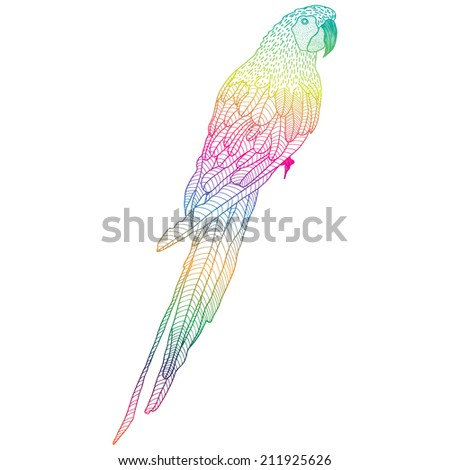Vector illustration with bright parrot - stock vector