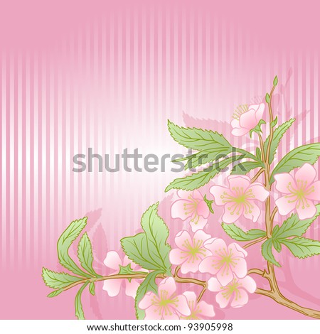 Vector illustration with cherry blossom for greeting card.