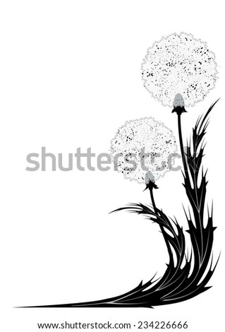 vector illustration with dandelion for corner design in black and white colors (EPS 10) - stock vector