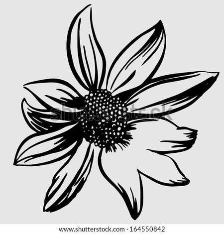Vector illustration with flowers - stock vector