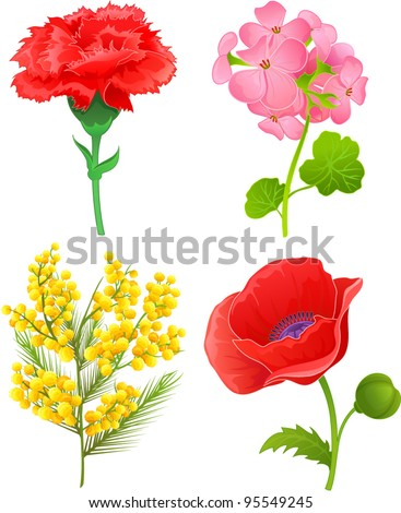 Vector illustration with 4 flowers: carnation, violet, mimosa, poppy - stock vector