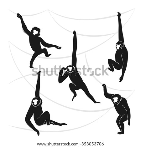 Vector illustration with monkeys  in different stance. Symbols of 2016 Chinese New Year.