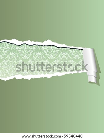 Vector Illustration With Olive Green Ripped Wallpaper Layered And Editable