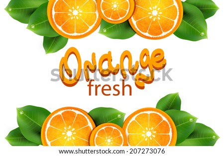 vector illustration with oranges on the white background - stock vector