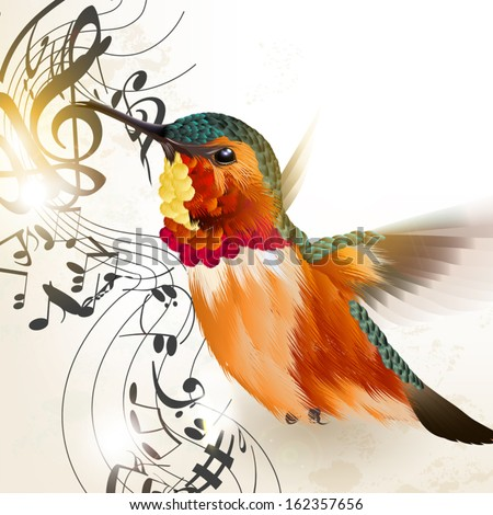 Vector illustration with realistic humming bird  and notes for design - stock vector