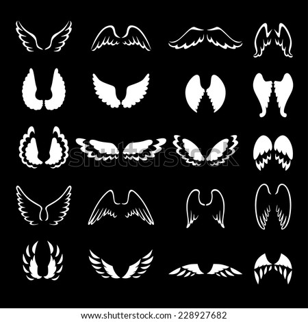 Vector illustrations of  set of white contour and silhouette different wings on black background - stock vector