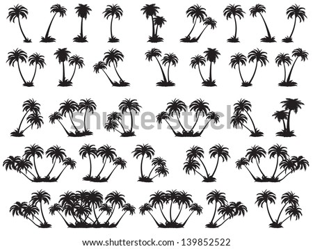 Vector illustrations silhouette of palm trees. A set of black trees on a white background - stock vector
