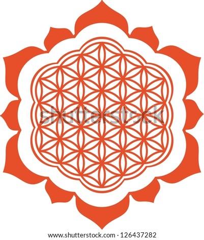 Vector image /  Lotus - Flower of life / symbol harmony and balance