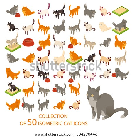 Vector image of a big set of cat isometric icons  - stock vector
