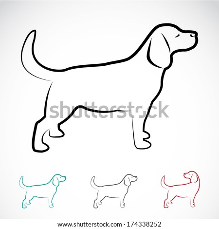 Vector image of a dog labrador on white background - stock vector