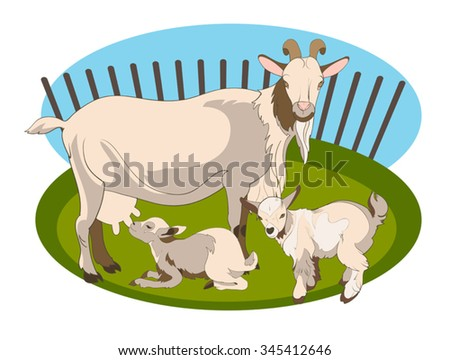 Vector image of a goat and her two cubs on 