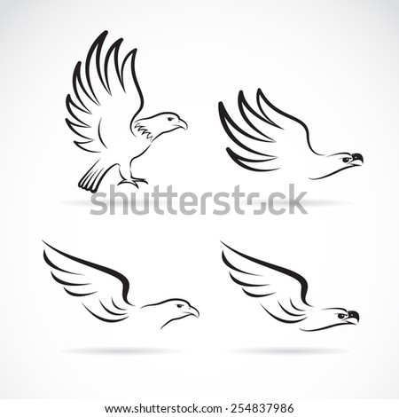 Vector image of an eagles design on white background - stock vector