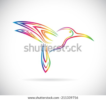 Vector image of an hummingbird design on white background - stock vector
