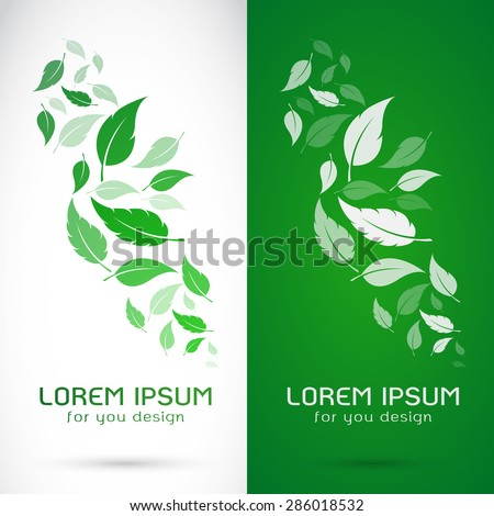 Vector image of an leaves design on white background and green background, Logo, Symbol - stock vector