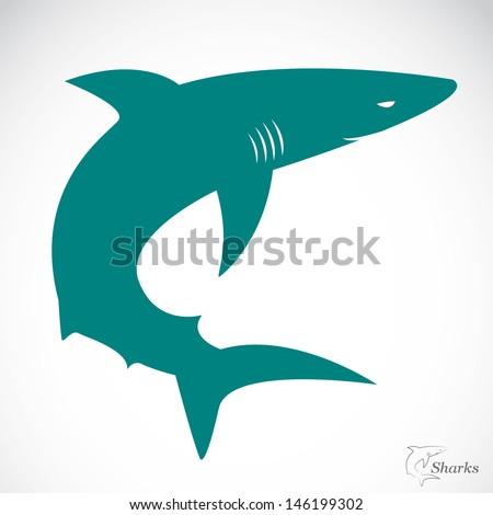 Vector image of an shark  - stock vector