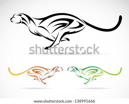 Vector image of an tiger (cheetah) on white background - stock vector
