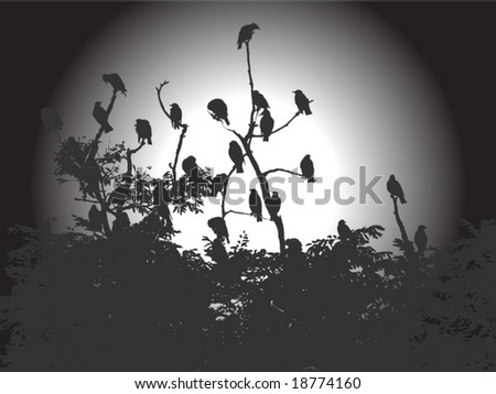 Vector image of flock of birds sitting on branches silhouetted by sun in gray - stock vector