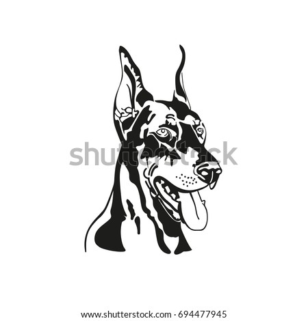 vector image of head dog doberman black and white silhouette