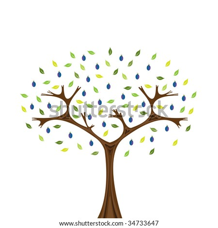 Vector image of plum tree isolated on white