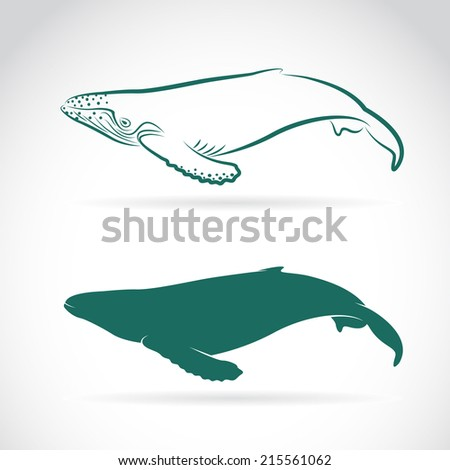 Vector image of whale on white background - stock vector