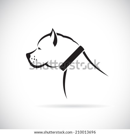 Vector images of Pitbull dog on a white background. - stock vector