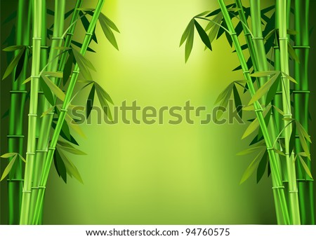 Vector images of stalks of bamboo - stock vector