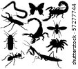 Vector insects silhouettes on white background. - stock vector