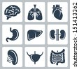 Vector internal organs icons set - stock photo