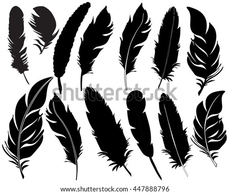 Feather Stock Images, ...
