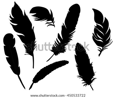 vector, isolated feathers silhouette,black