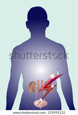 Vector isolated image Kidney and bladder pain and lightning. Concept of pain more. - stock vector