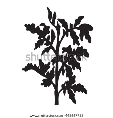 Image Result For House Plant Display