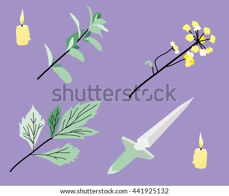 Vector items for magic ritual set: knife, candle, plants. - stock vector