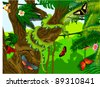 Vector Jungle with Green Snake, Frog, Butterflies and Humming-birds - stock vector