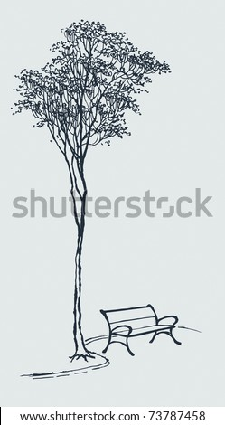 Vector landscape. Sketch the bench in a park near a tall tree - stock vector