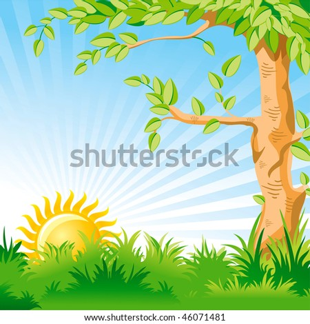 Vector landscape with a Sunrise and large tree in the foreground - stock vector