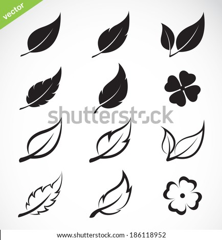 Vector leaves icon set on white background - stock vector