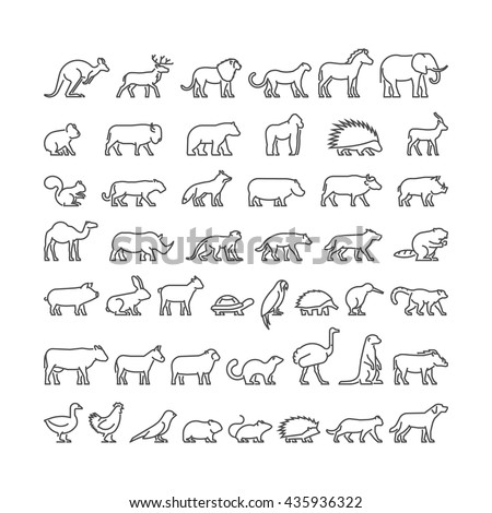 Vector linear set of silhouettes of domestic, farm, forest and wild animals. Line icon hedgehog, squirrel, cat, dog, cow, ferret, lion, panther and others. Open path. - stock vector