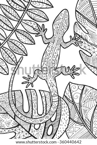 Vector Lizard Tropical Illustration For Adult Coloring Book Hand Drawn Page