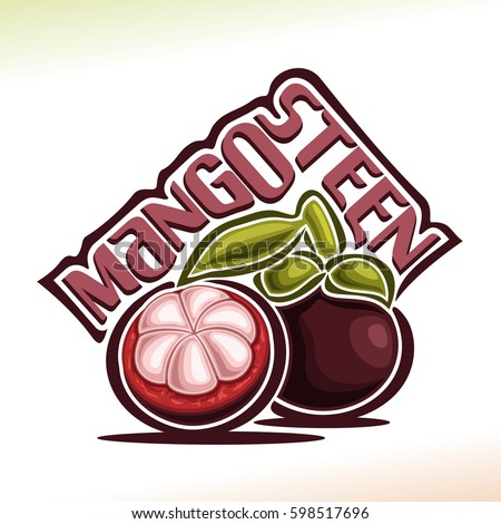 Vector logo Mangosteen Fruit: still life of 2 whole and cut mangosteen with green leaf, fresh purple exotic fruit, abstract cartoon icon garcinia mangostana with title text for label isolated on white