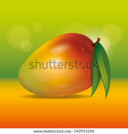 Vector mango illustration on colorful background