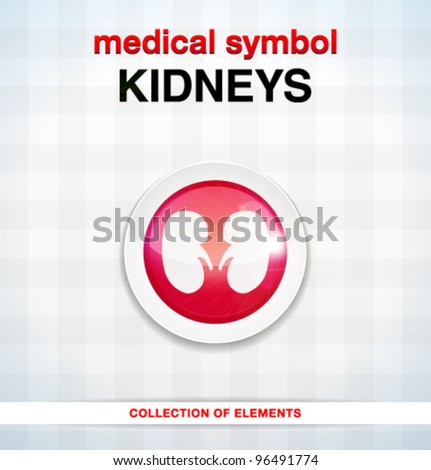 Vector medical icons / kidneys / series of icons - stock vector