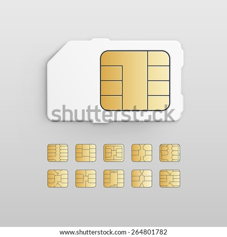 Vector Mobile Cellular Phone Sim Card Chip Set Isolated on Background